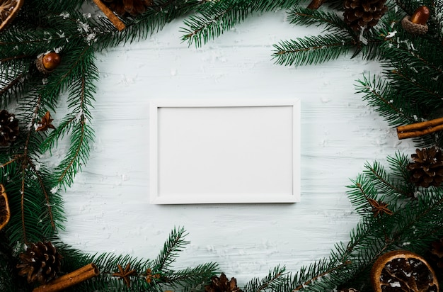 White photo frame between fir branches Free Photo