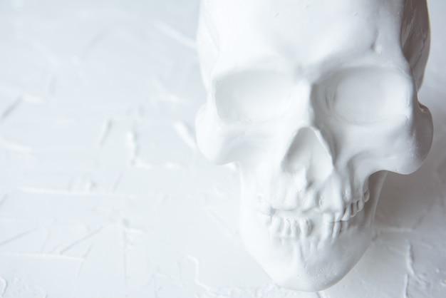 Белый гипс человеческий череп на светлом фоне. копировать пространство Premium Фотографии