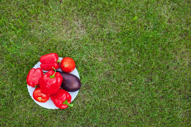 White plate with red peppers on a green grass Premium Photo