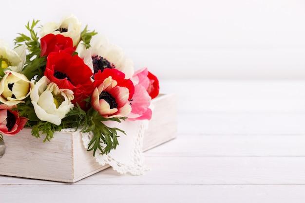 White and red anemone flowers Premium Photo