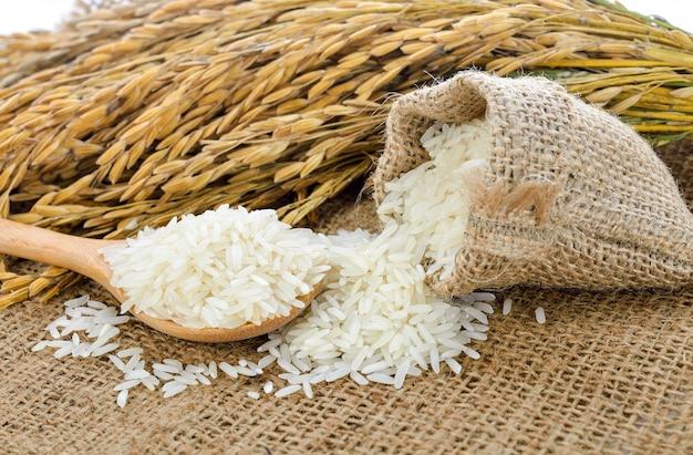 White rice (thai jasmine rice) and unmilled rice Premium Photo