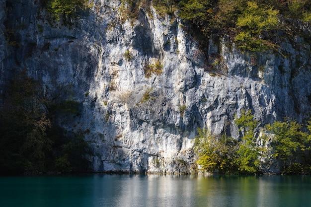 クロアチアのプリトヴィツェ湖の近くの木で覆われた白い岩 無料写真