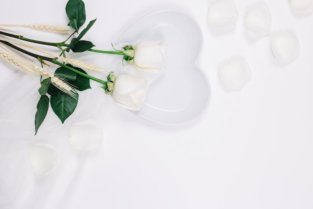 White roses petals Free Photo