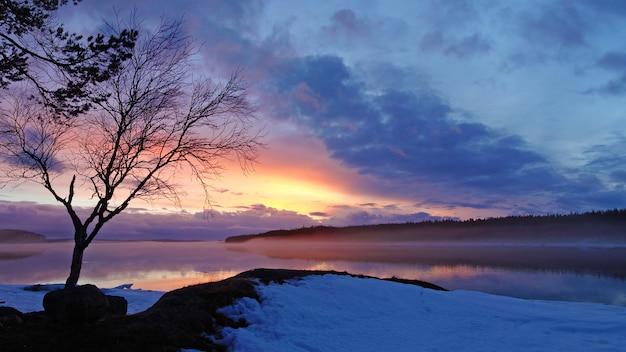White sea karelia winter sunset photo in the evening Premium Photo