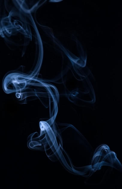 White smoke collection on black background Free Photo