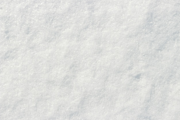 White snow shining in the sun close-up texture natural background Premium Photo