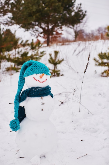 White snowman stands and smiles in a blue scarf and hats Free Photo