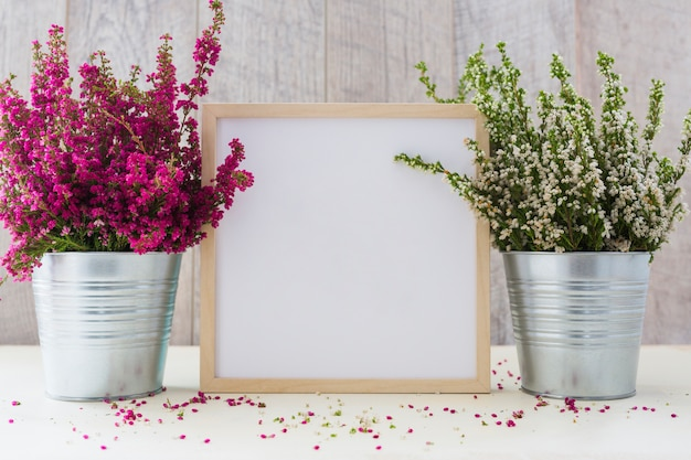White square photo frame between the pink and white flowers in an aluminum pot Premium Photo