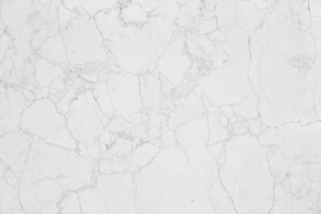 White Stone Texture Photo  Free Download