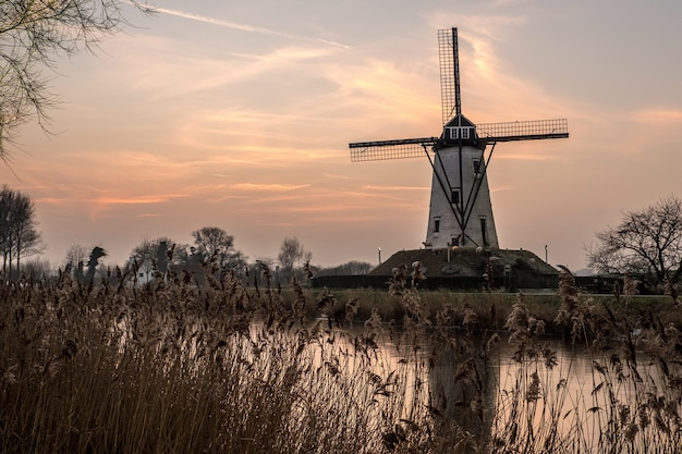 White windmill near the lake surrounded by grass under the beautiful sky Free Photo