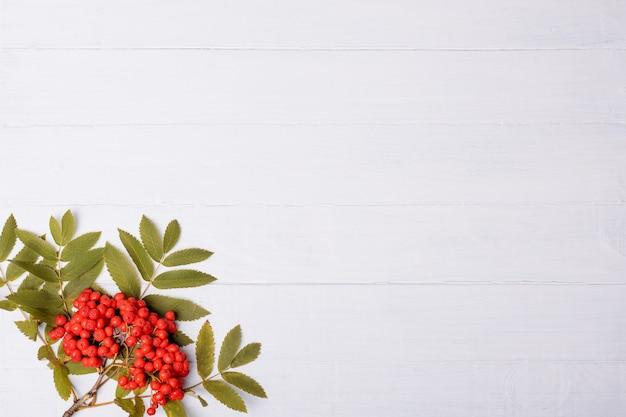 Белый деревянный с рябиной Premium Фотографии