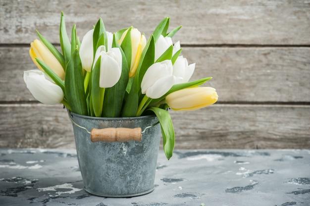 White and yellow tulips in tin bucket Premium Photo