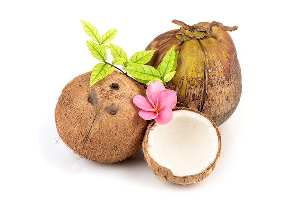 Весь кокос, изолированные на белом. Premium Фотографии