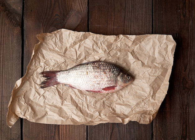Whole fresh crucian fish with scales on a crumpled brown piece of paper Premium Photo