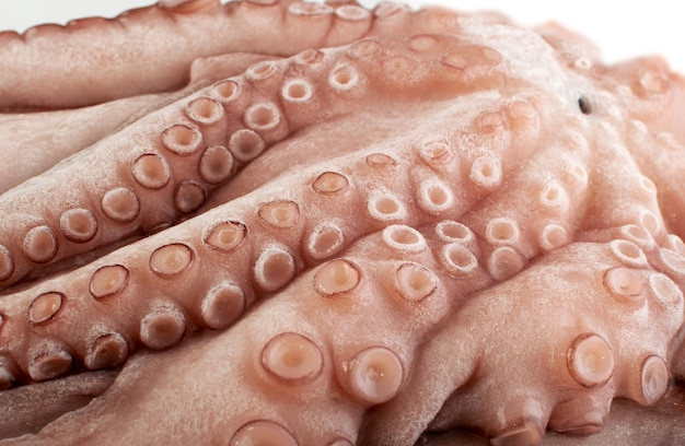 Whole frozen octopus with big tentacles. raw iced seafood, squid, calamari or cuttlefish texture closeup Premium Photo