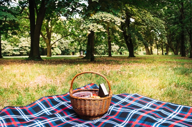 Wicker picnic basket on blanket in the park Free Photo