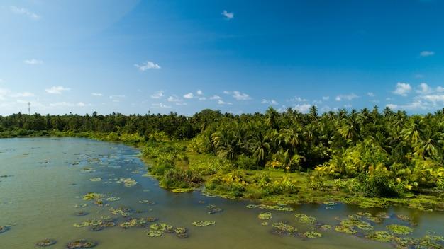 Ampia ripresa aerea di un lago su una delle isole delle maldive Foto Gratuite
