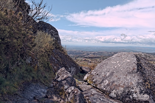 Wide angle shot of a mountain field full of rocks and twigs Free Photo