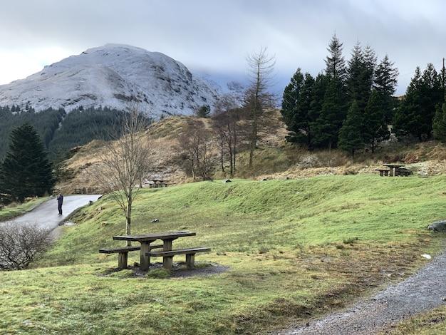 Colpo grandangolare di montagne circondate da alberi e vegetazione Foto Gratuite