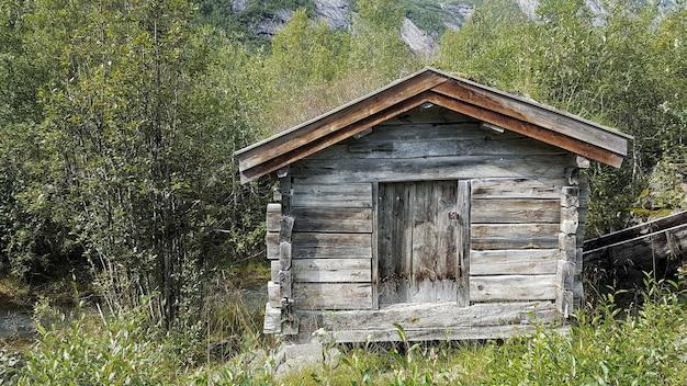 Colpo grandangolare di una piccola casa in legno circondata da alberi Foto Gratuite