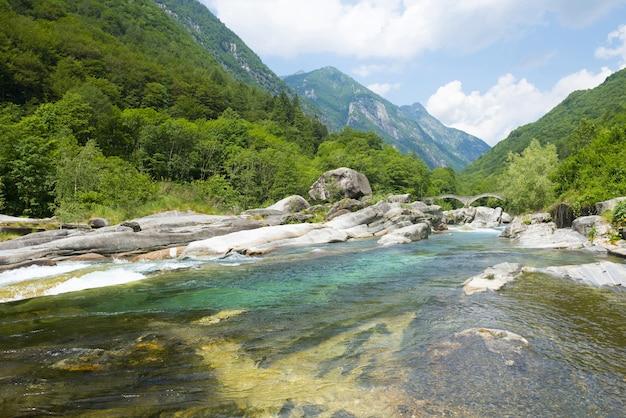 Ampio angolo di visione di un fiume che scorre attraverso le montagne coperte di alberi Foto Gratuite