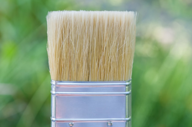 The wide bristle brush to paint on green Premium Photo