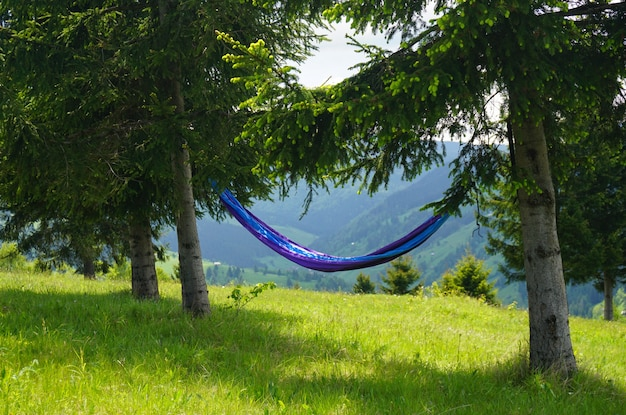Ripresa a tutto campo di un'amaca blu legata a due alberi su una collina con una bellissima vista della natura Foto Gratuite
