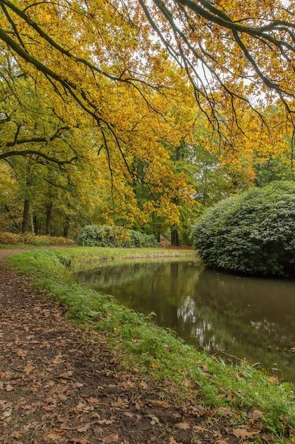 Общий вид парка с озером в окружении кустов и деревьев Бесплатные Фотографии