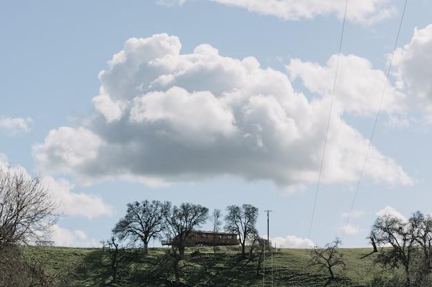 Широкий выстрел из деревьев в поле зеленой травы возле деревянного домика под чистым небом с белыми облаками Бесплатные Фотографии