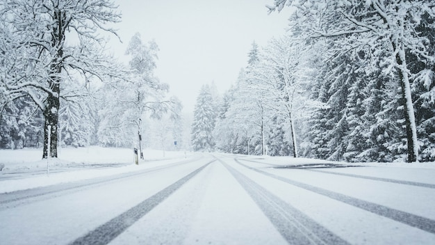 Wide shot of a road fully covered by snow with pine trees on both sides and car traces Free Photo