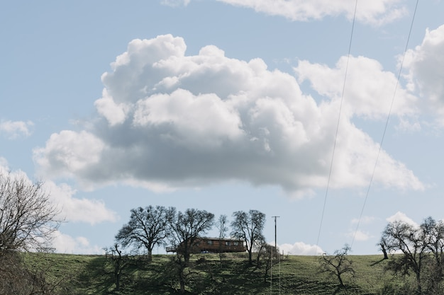 Wide shot of trees in a green grass field near a wooden cabin under a clear sky with white clouds Free Photo