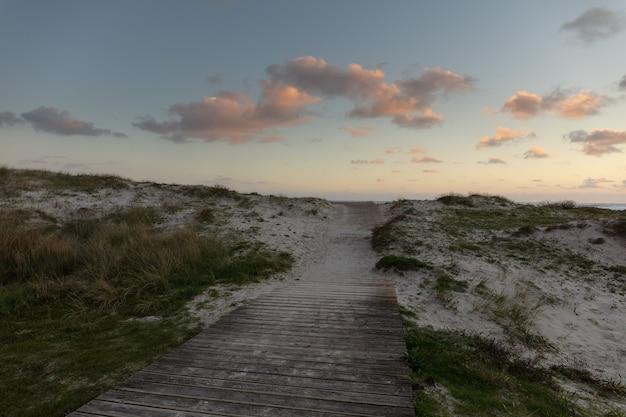Campo lungo di un sentiero in legno nella sabbia con erba intorno e un cielo nuvoloso Foto Gratuite