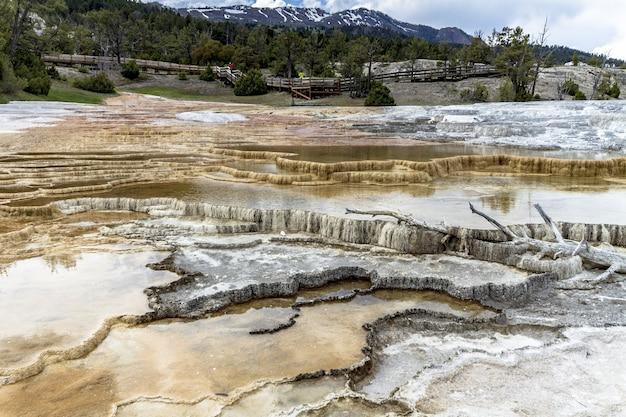 Ripresa a tutto campo del parco nazionale di yellowstone sotto un cielo nuvoloso circondato dal verde e dalle montagne Foto Gratuite