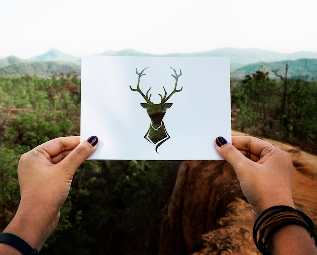 Wild life animal perforated paper moose Free Photo