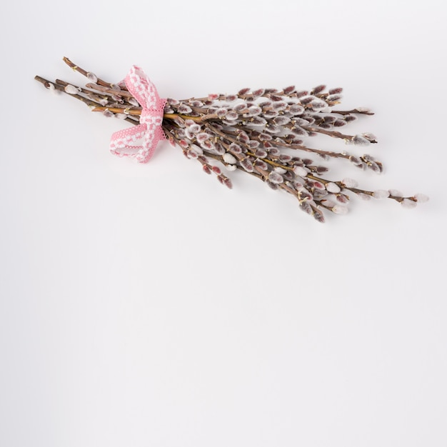 Willow branches with catkins on white table Free Photo