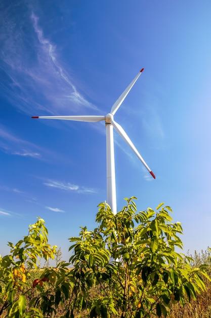 Wind turbine shot from below, grass and bush in moldova Free Photo