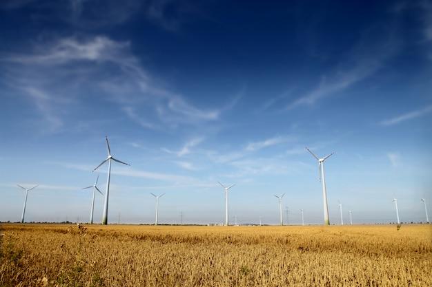 Wind turbines farm Premium Photo