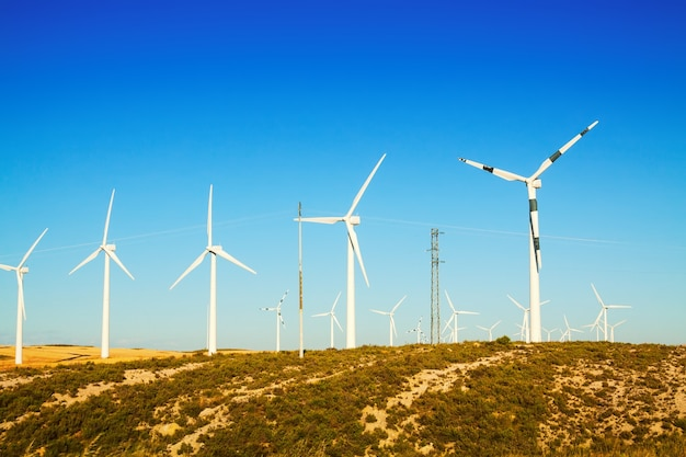 Wind turbines at farmland in summer Free Photo