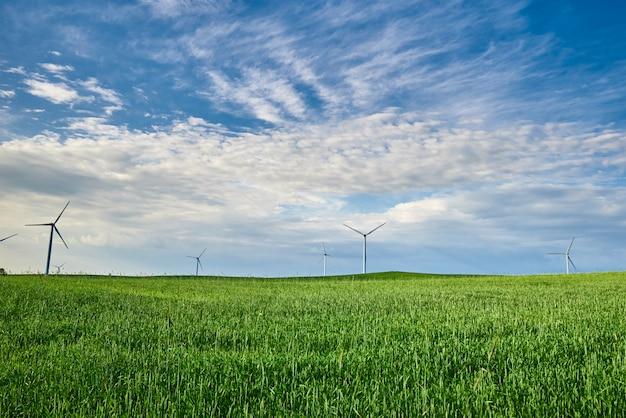 緑の草のある畑の風力タービン Premium写真