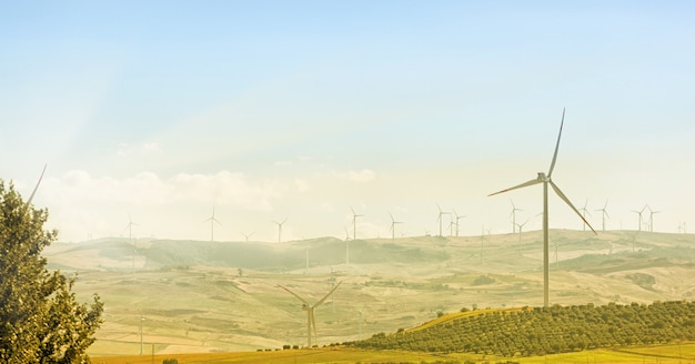 Wind turbines Premium Photo