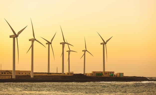 Windfarm view рядом с морем на фуэртевентуре Premium Фотографии