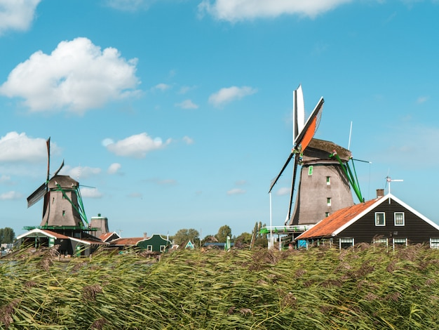 アムステルダムの風車 Premium写真