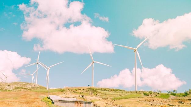 Windmills in field Free Photo