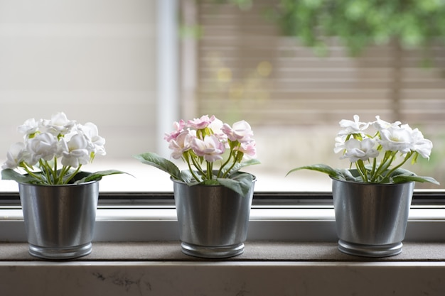Window sill with three flowerpots on a blurred background Free Photo