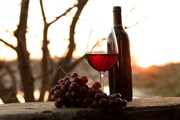 Wine bottle and glass with red grapes Free Photo
