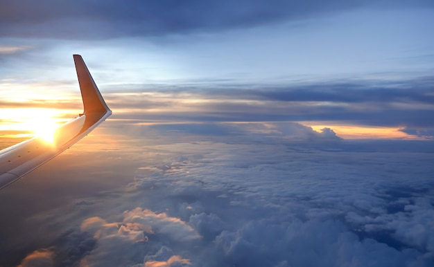 Wing of the plane Premium Photo