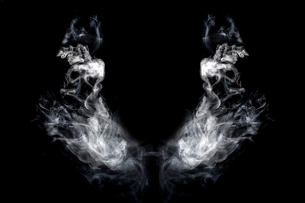 Wings of smoke on an isolated black background Premium Photo