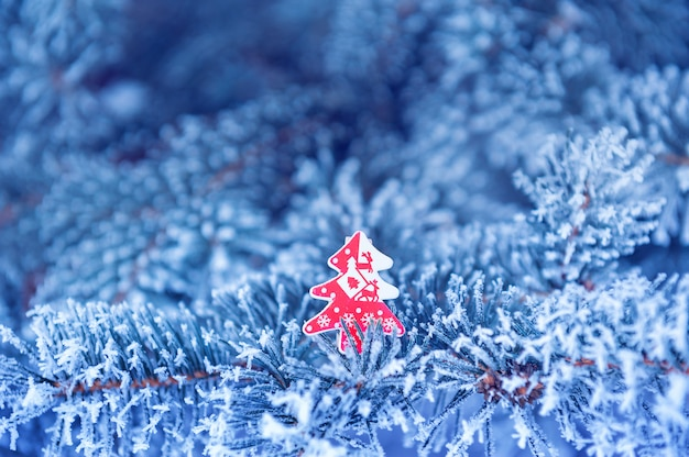 Winter , close up of frosted pine branch on a snowing day Premium Photo