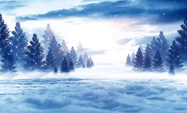 겨울 어두운 숲, 전나무 나무와 눈 덮인 풍경. 프리미엄 사진