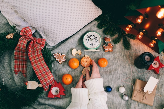 Winter decoration Premium Photo